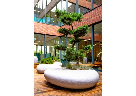 Duża donica ogrodowa Degardo Storus I dekoracyjna do biura lub do domu